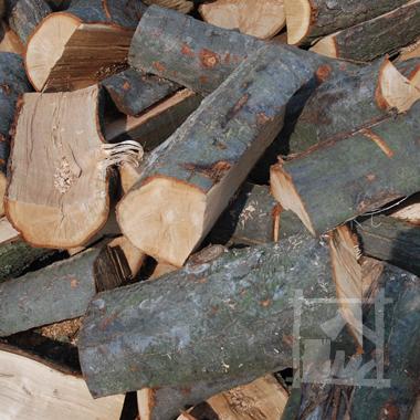dąb czerwony, drewno to znakomicie nadaje się do palenia w kominku