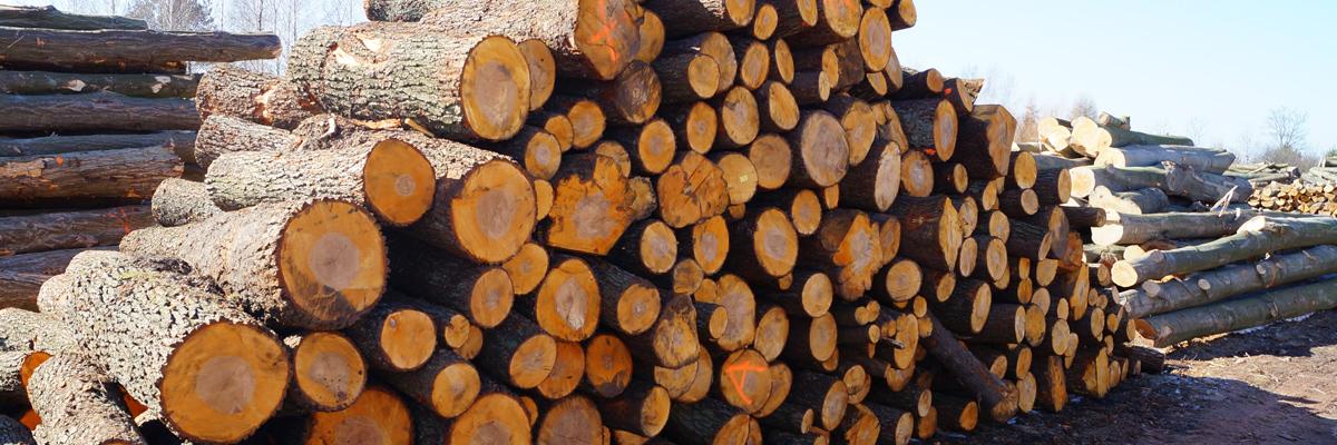 drewnokominkowe_4