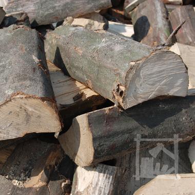 grab to gatunek drewna który także dobrze się sprawdzi jako drewno opałowe